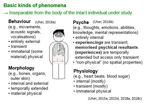 TPS Paradigm - Basic kinds of phenomena